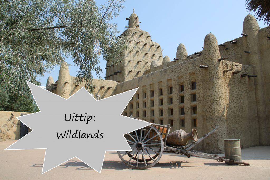 Uittip: Wildlands Adventure Zoo Emmen
