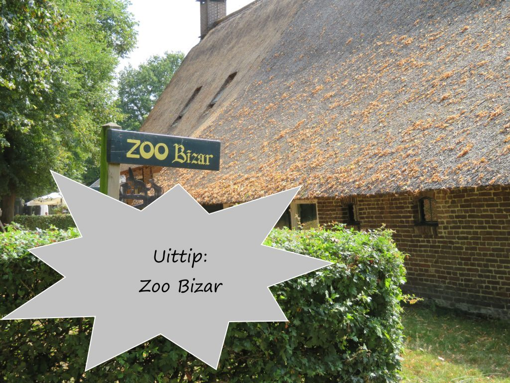 Uittip: Zoo Bizar