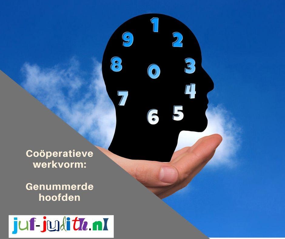 Genummerde hoofden, een coöperatieve werkvorm