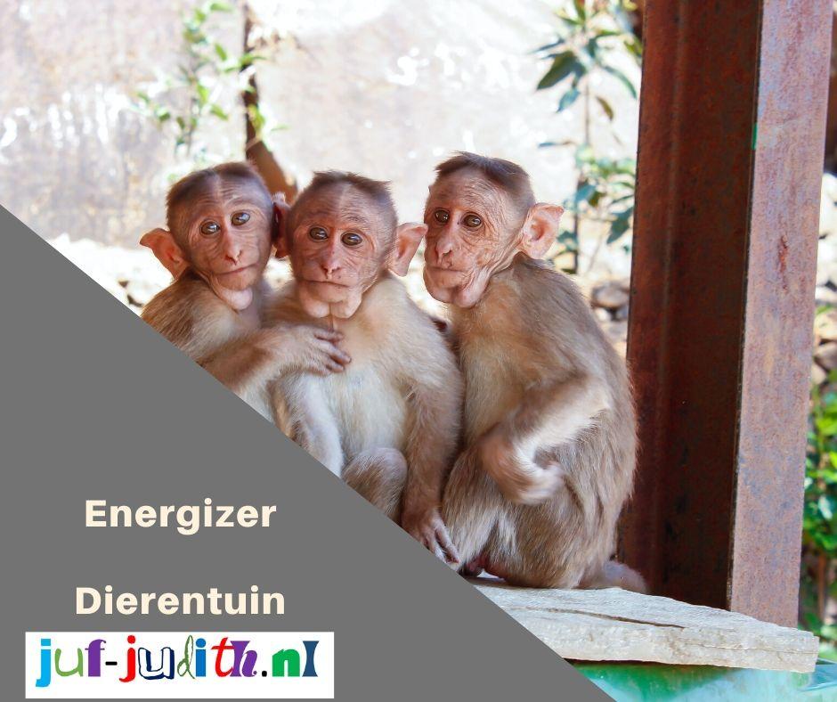 Energizer - Dierentuin